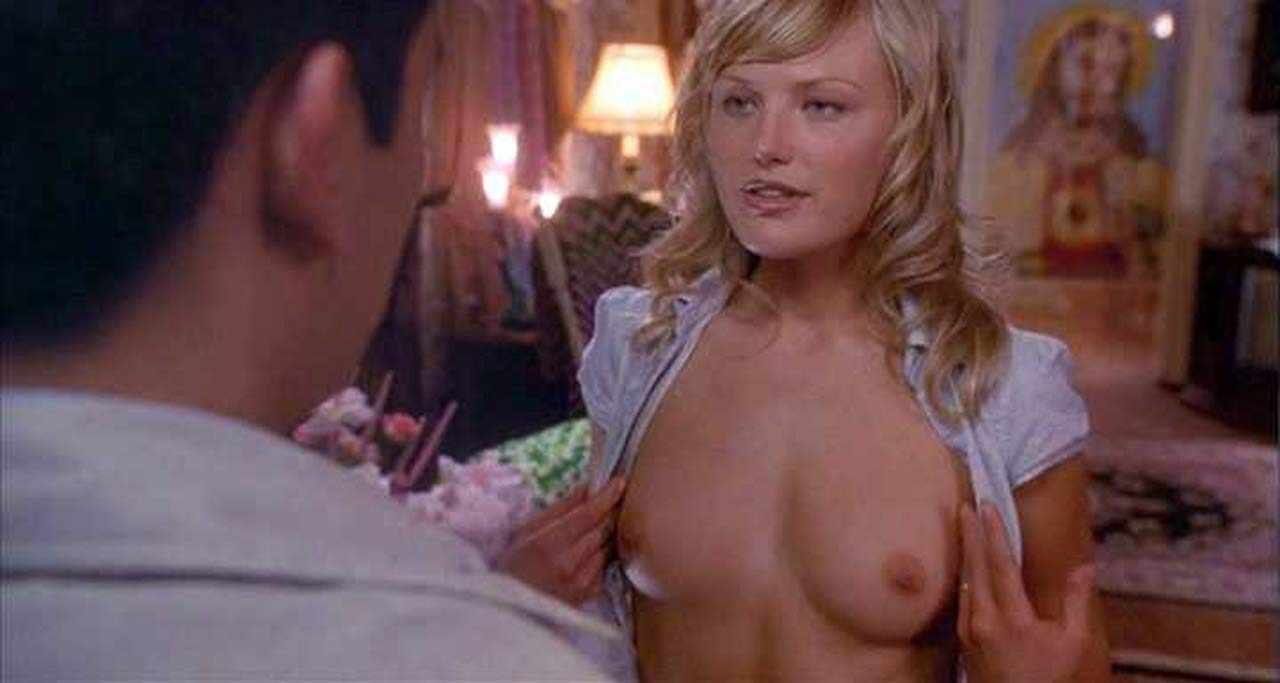 Malin Akerman Boobs in 'Harold & Kumar Go To White Castle ...