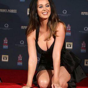 katy perry boobs