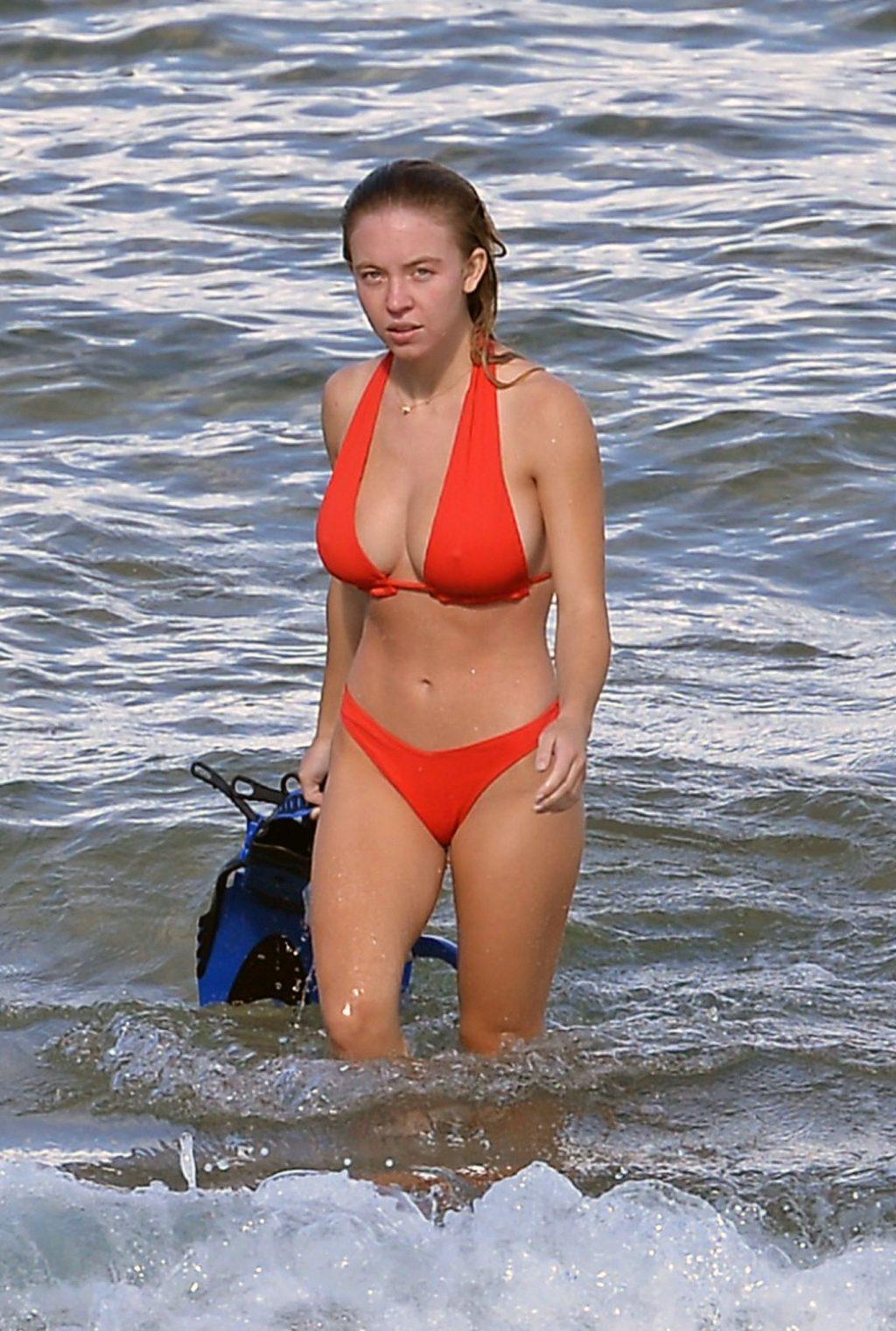 Sydney Sweeney tits